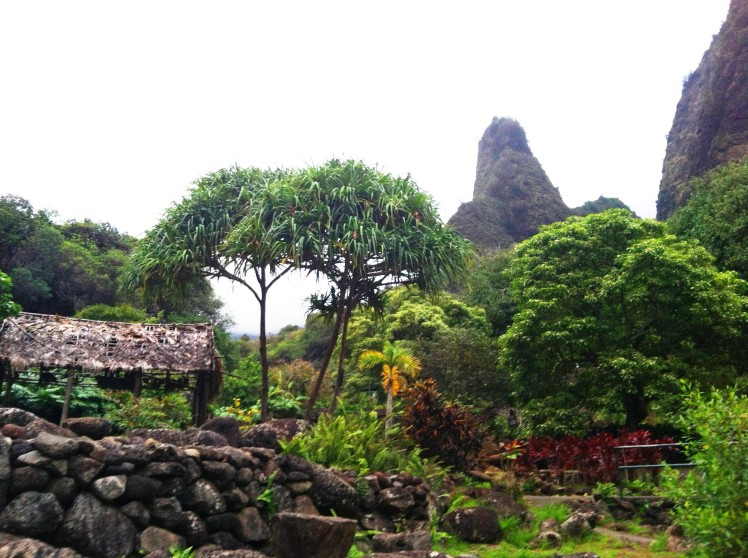 Iao Needle and surrounding gardens