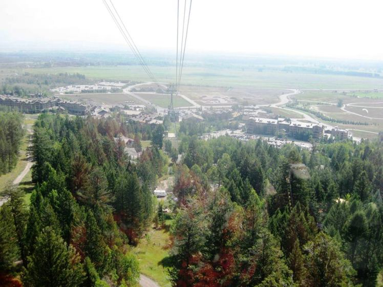 View from aerial tram